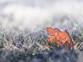 Meteorológovia vydali na väčšine územia výstrahu pred nočnými nízkymi teplotami