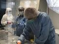 Vo Virologickom ústave Biomedicínskeho centra SAV prebieha testovanie vzoriek na prítomnosť koronavírusu SARS-CoV-2