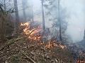 FOTO Hasiči mali plné ruky práce: Pri železničnej trati medzi Popradom a Košicami horelo na štyroch miestach