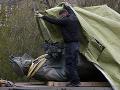 Česko je pripravené rokovať o presune Konevovej sochy do Ruska, hovorí minister Petříček
