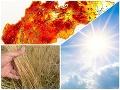 Väčšia hrozba pre Slovensko ako KORONAVÍRUS?: Zasiahlo nás extrémne sucho, hrozivé varovanie klimatológa