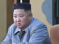 Nevstal z mŕtvych! Britská exposlankyňa sa Kimovi prizrela na zúbky a vyzerá to na škandálny podvod