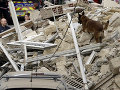 Na juhu Poľska sa zrútila budova: Pátrajú po prípadných nezvestných