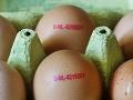 FOTO Matka kúpila balenie vajec: Nechcela veriť tomu, čo našla v každom z nich