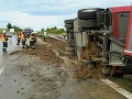 Na diaľnici medzi Brnom a Kromeřížom havarovalo auto s 200 prasatami