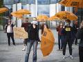KORONAVÍRUS Protesty proti obmedzeniam v Nemecku počas pandémie COVID-19 boli pokojné