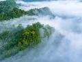 Svetová meteorologická organizácia varuje: Rekordné hodnoty v súvislosti s klimatickou zmenou!
