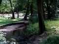 FOTO Bratislavčanka Janka sa šla prebehnúť na Železnú studienku: Ale čo nenašla v lístí!