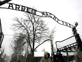 Holokaust podľa nich zapríčinili Židia: Mladí Američania majú šokujúci nedostatok vedomostí