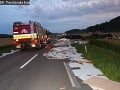 FOTO desivej tragédie pri Prievidzi! Osudný manéver stál vodiča nákladiaku život, mrazivé okolnosti