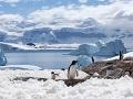 Alarmujúce zistenie klimatológov o Južnom póle: Toto nečakali ani v tej najhoršej nočnej more