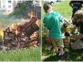 Neskutočné barbarstvo! FOTO Hmyzí hotel v areáli bratislavskej školy stihol krutý osud