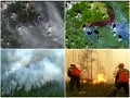 Požiare na Sibíri
