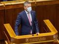 Vláda má nebezpečnú ústavnú väčšinu, dokáže s krajinou robiť, čo chce, tvrdí Pellegrini