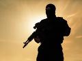 Bezpečnostné sily v Afganistane