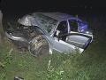 Hrozivá nehoda v Michalovciach: FOTO Osudný náraz do stromu! Vodič je mŕtvy, spolujazdkyňa v nemocnici