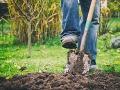 Muž ostal v šoku, keď mu zavolal bývalý sused: Pozri, čo sa našlo v tvojej záhrade!