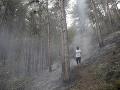 Hasiči bojovali s požiarmi niekoľko dní