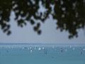 Panika na Balatone: V pondelňajšej búrke museli z jeho vôd zachrániť desiatky ľudí