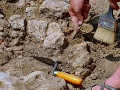Pri Skalici prerušil stavbu rodinných domov ohromujúci objav