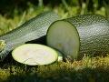 Šialené muky manželského páru: Zjedli obľúbenú zeleninu! Peklo v ústach a Satan na jazyku