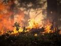 Lesný požiar zasiahol Grécko: Vypukol neďaleko archeologického náleziska v Mykénach