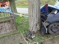 FOTO Polícia obvinila opitého nevodiča: Autom zrámoval všetko, čo mu prišlo do cesty