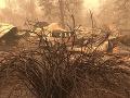 Požiare v USA neutíchajú: Pátranie po nezvestných pokračuje v troch západných štátoch