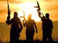 Daeš je silný vďaka svojim odnožiam, al-Káida oslabila po smrti vodcov