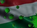 Epidémia v Maďarsku má