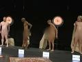 VIDEO Škandálna šou v dánskej televízii: Dospelí sa pred školákmi vyzliekali donaha