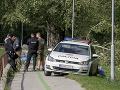 Patrika (†14) zabil strom: Od tragédie v Nitre prešiel rok! Obvinili podnik aj učiteľku