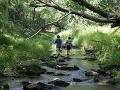 Deti sa hrali pri potoku, keď si v ňom niečo všimli: Neuveríte, čo z neho vylovili