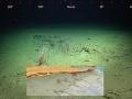 VIDEO Gigantický objav pod