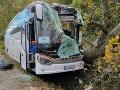 Tragická nehoda autobusu pri Senici: FOTO Šofér (†44) neprežil náraz do stromu, cesta je neprejazdná