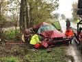 FOTO Pri Trnave skončilo červené BMW mimo cestu v strome: Zranili sa malé deti, z auta je šrot