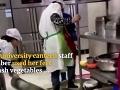 Šokujúce VIDEO zo školskej jedálne: Hygienikom pri sledovaní kuchárov naskakujú zimomriavky