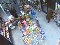 Neuveriteľný prípad: VIDEO Medveď si zvykol chodiť na pumpu, viackrát ukradol jedlo