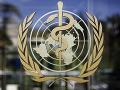 KORONAVÍRUS WHO pre pandémiu