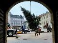 FOTO Bratislava má už tiež svoj tohtoročný vianočný stromček: Pozrite na toho krásavca