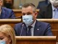 Pellegrini o rozhovore s Jankovskou: Spávam pokojne, nežiadal som ju, aby pomáhala Kočnerovi