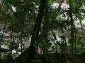 FOTO Amazonský prales ukrýva jedno z najväčších nálezísk: Keď uvidíte tú nádheru, padne vám sánka