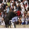 Rozzúrený býk vybehol až na tribúnu, zranil 40 divákov!