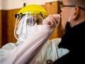 Pri celoplošnom testovaní na Slovensku pomáhalo 193 lekárskych asistentov z Maďarska