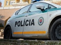 Polícia pre popadané stromy uzavrela cestu z Gemerskej Polomy na Hnilec
