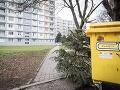 Kam po sviatkoch s vianočným stromčekom? V mestách začína ich zber: Pozrite sa, kde ich môžete odložiť