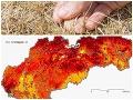 Veľká ANALÝZA sucha na Slovensku za rok 2020: Viaceré oblasti čelili extrémnej situácii