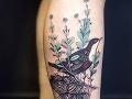 Vtáky, veveričky, bylinky: Martina