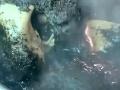 Azealia Banks vyhrabala svojho mŕtvého kocúra a jeho ostatky varila v hrnci. Konaním mnohých pobúrila.