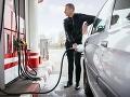 FOTO Šok na benzínke: Vodič chcel natankovať, no keď zbadal, čo je za stojanom, až ho striaslo